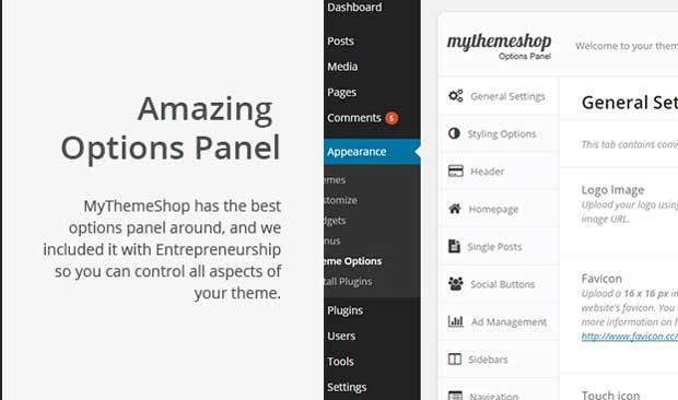 Entrepreneurship Theme Option Panel