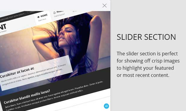 Slider and Featured Post Section in the Point Pro Theme