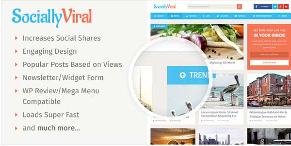 SociallyViral Theme for Blog & Magazine Site