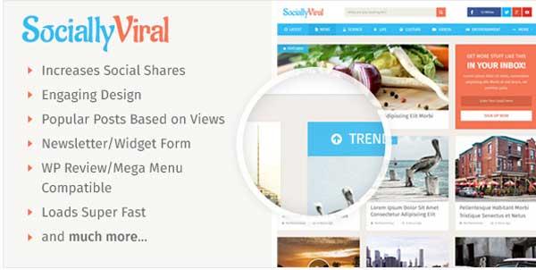 SociallyViral Theme for Blog & Magazine Site