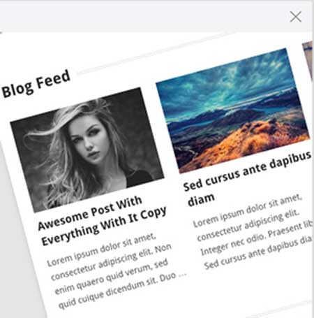 Blog Feed and Gallery Section