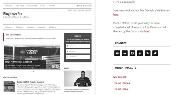 Blognews Theme
