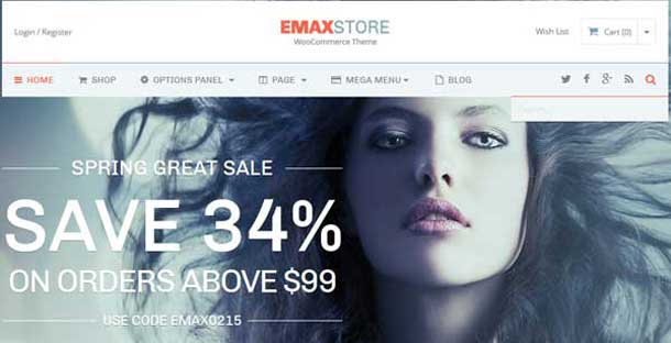 eMaxStore Theme for eCommerce Site