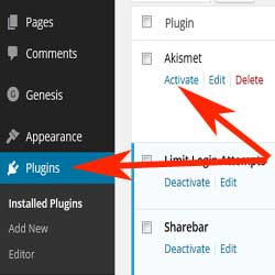 how-to-active-akismet-plugin-step1
