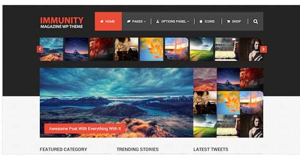 Immunity, Premium WordPress eCommerce Theme