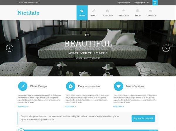 nictitate-free-responsive-theme
