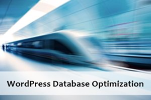 WordPress Databse Optimization